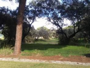 Terreno en Avenida El Pinar de La Juliana