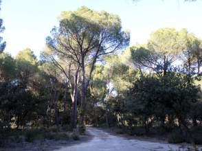 Terreno en Albacete