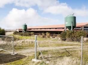 Nave industrial en calle Paraje Cerro del Lomo -