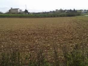 Terreno en Carretera Manacor Sant Llorenç