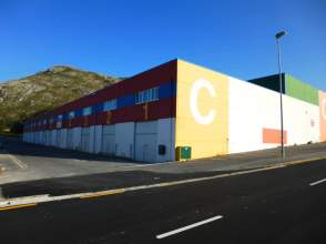 Nave industrial en calle Poligono Vallegon
