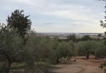 Rural Property in Zona Nord