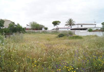 Terreno en Mogarizas-Las Rapazes
