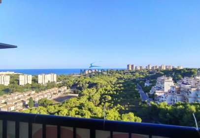 Penthouse in calle Y-1 Campoa-Sector Norte