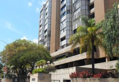 Piso en Avenida Profesor Peraza de Ayala