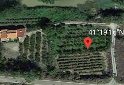 Terreno en Carretera de Ateca a Munebrega, 1