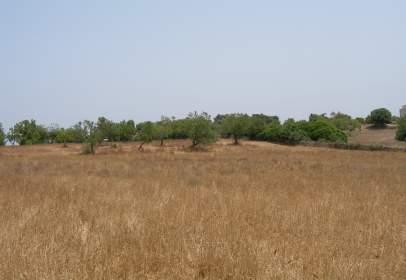 Terreno en A 3 Km del Pueblo