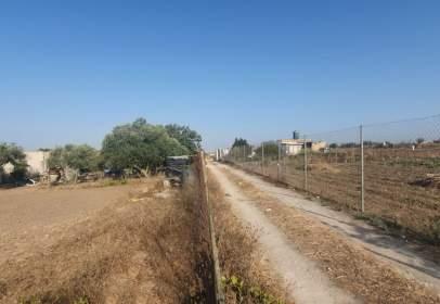 Terreno en Carretera Jerez-Rota