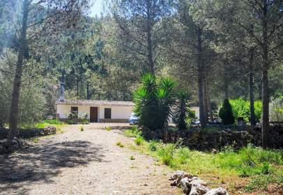 Casa rústica en calle Cami Diez Llacuna , nº A