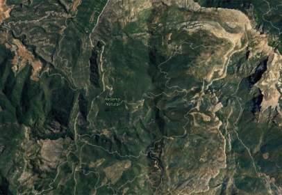 Terreno en Masboquera