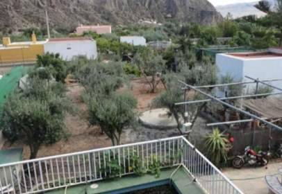 Rural Property in Rambla Tabernas, nº 1