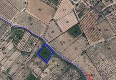Land in calle Poligono 17 Parcelas  74, nº 124