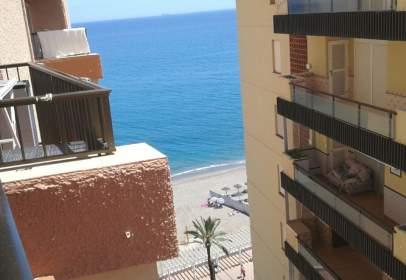 Estudio en Paseo Marítimo Rey de España, cerca de Calle Marina Nacional