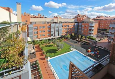 Penthouse in Rejas