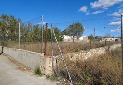 Land in calle Leocadio Brun, nº 35
