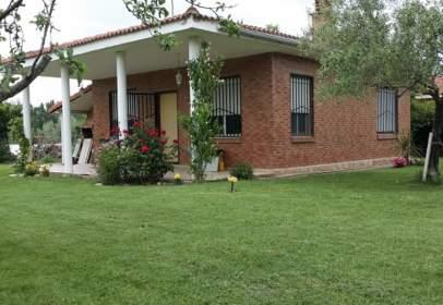 Rural Property in calle de Cementerio Viejo