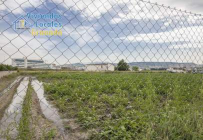 Land in Camino del Aravenal, nº 13