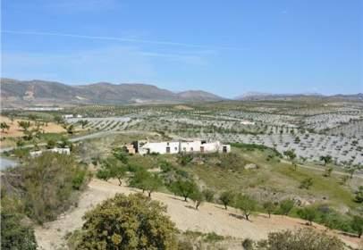 Rural Property in Pasaje Saliente Alto