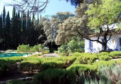 Finca rústica a calle Diseminado Salinas, 509, 29315, Málaga, España