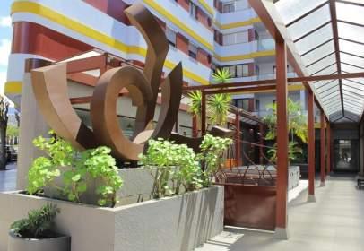 Apartamento en Avenida Carlos Francisco Lorenzo Navarro, nº 42