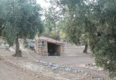 Terreny a Valjunquera
