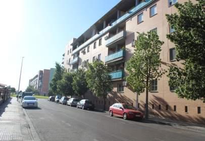 Apartament a Avenida del Prado, nº 11