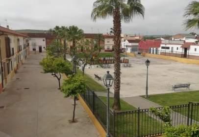 Piso en Palma del Río