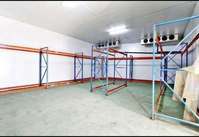 Industrial Warehouse in Salón Santa Gadea