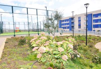 Piso en San Bernardo-Campus-Platina