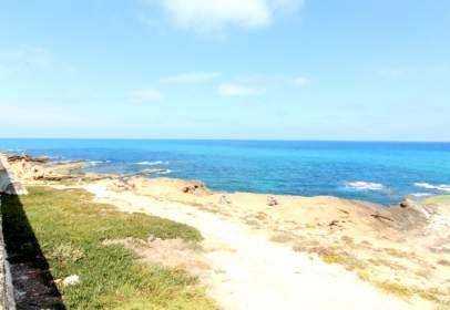 Piso en Playa de los Locos-Los Frutales-Cabo Cervera