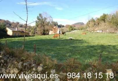 Terreno en Zona Oviedo - Oviedo