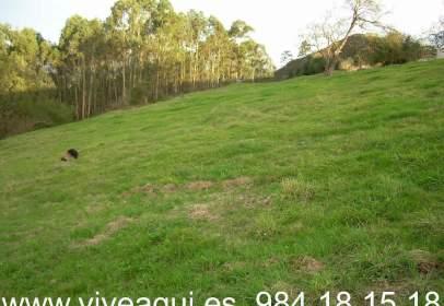 Terreny a Resto Provincia de Asturias - Siero