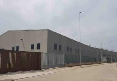Nave industrial en calle Pla de L'estany, nº 19-27