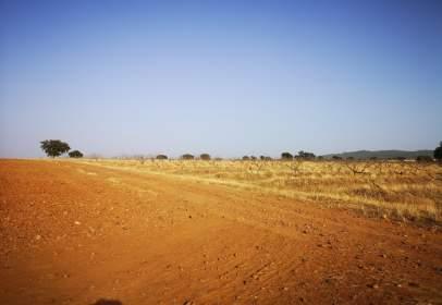 Rural Property in calle Cañada Gil