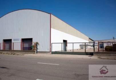 Nave industrial en calle Pgno. Industrial La Cartuja Baja, nº 6