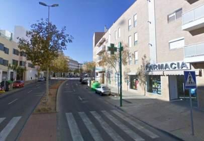 Pis a Zona de Universidad - Castellon