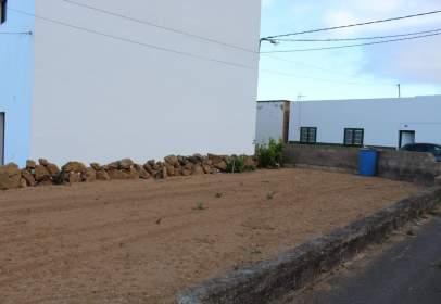 Terrenos En Arico Santa Cruz De Tenerife En Venta