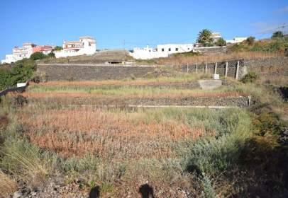 Rural Property in Camino de La Palma