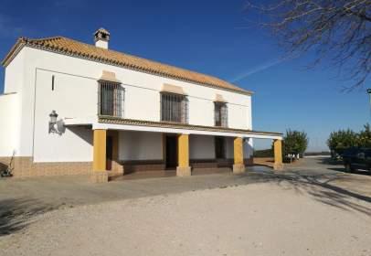 Rural Property in Carmona