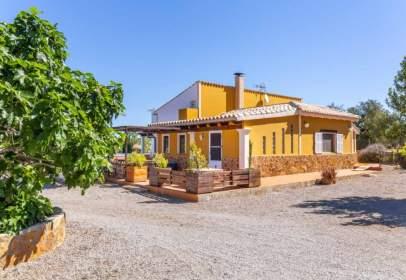 Rural Property in Camí de Son Marrano, nº 1