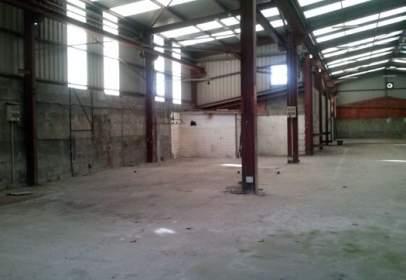 Nau industrial a Avenida Liboreira Pg 21, Parc 820