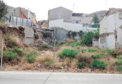 Terreny a Carretera de Alcantarilla