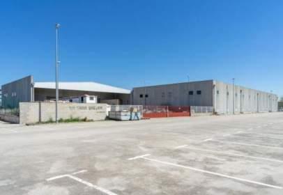 Industrial Warehouse in calle Galápagos A Torrejón del Rey Km 0,4, Pc A2 0