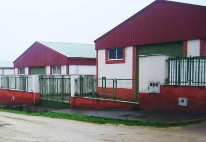 Nave industrial en calle Centro del Prado, Polígono Charca del Hambre -