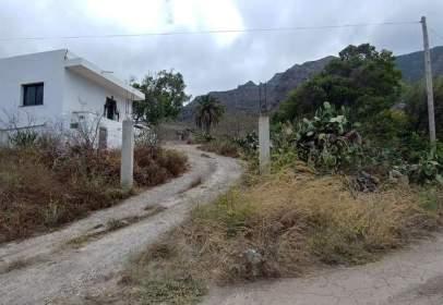 Rural Property in Buenavista del Norte