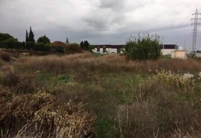 Land in Poligon   Les Comes I Raconada