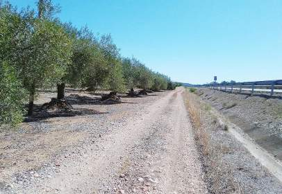 Finca rústica a Carretera Nacional Morella