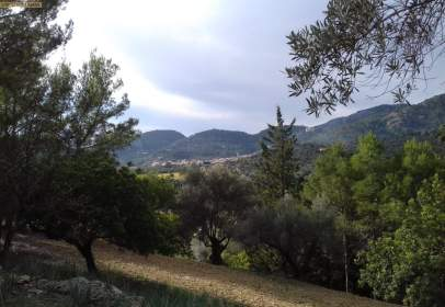 Terreno en Mancor de la Vall
