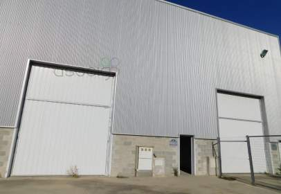 Industrial Warehouse in Fontanar
