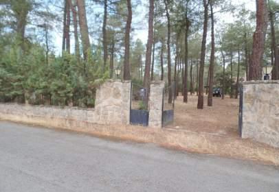 Chalet en Pinar Jardin
